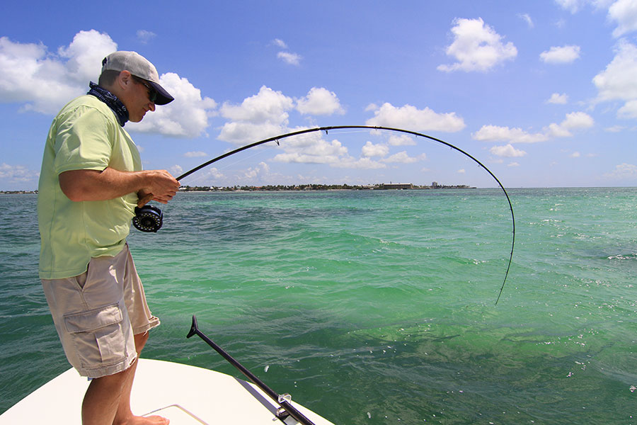 Todd s poon gallery fly fishing for tarpon strip strike for Fly fishing for tarpon